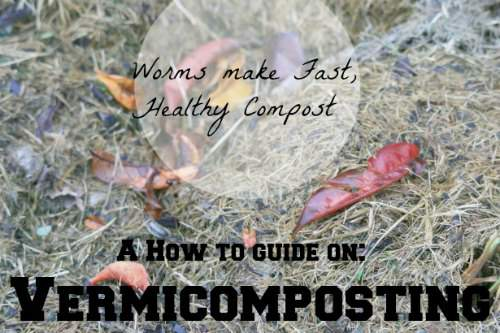 A How To Guide: Vermicomposting found at PintSizeFarm.com