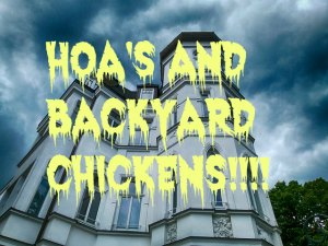HOA and backyard chickens