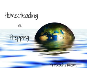 Are you a homesteader or a prepper?