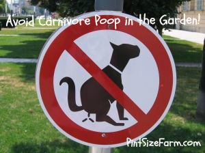 You need to take special precautions if you compost carnivore manure.