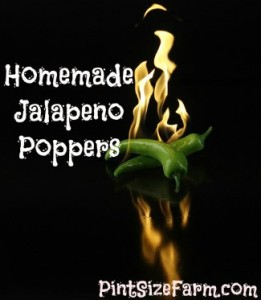 super simple homemade jalapeno poppers