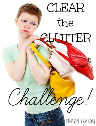 Clutter Clearing challenge and tips!