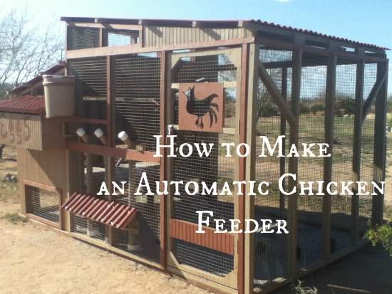 How to make an automatic chicken feeder. Found at www.PintSizeFarm.com