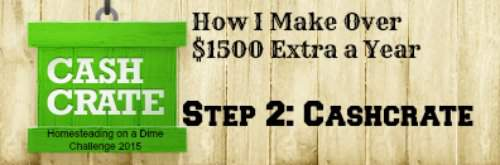 Make an extra $1500/year - step 2. Cashcrate Homesteading on a Dime challenge found at PintSizeFarm.com