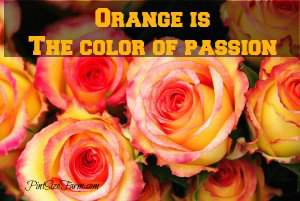 Valentine Roses - Orange is a great color signifying passion. Found at www.PintSizeFarm.com