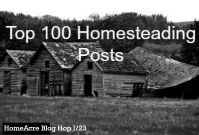 Top 100 Homestead posts at the HomeAcre blog hop. Found at www.PintSizeFarm.com