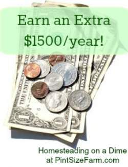 Use the extra $1500 to pay down debt or buy things you want or need. Homesteading on a dime challenge found at PintSizeFarm.com