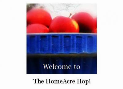 Discover some of the Best Homesteading Blogs! found at www.PintSizeFarm.com
