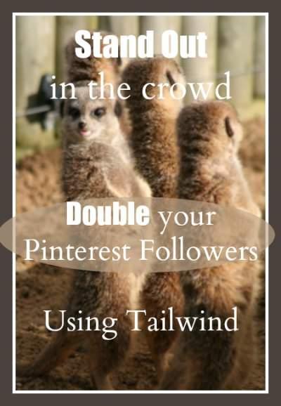 Optimize tailwind (a pinterest scheduler) and double your pinterest followers! PintSizeFarm.com